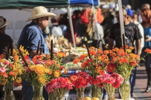 Shoppers at Santa Fe Saturday Market next to rail yard enjoy bounty of fall harvest, Santa Fe, New Mexico, USA